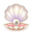 precious pearl in opened shell realistic vector image