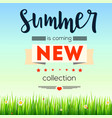 summer new collection banner vintage style text vector image vector image