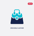 two color crocodile leather bag icon from culture vector image vector image