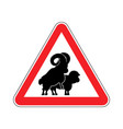 attention sheep sex warning ram intercourse red vector image