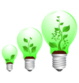 bulb and plant growth vector image vector image