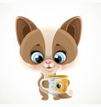 cute cartoon baby cat with a cup tea or coffee vector image vector image