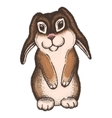 Hand drawn colored sketch of easter rabbit vector image vector image
