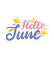 hello june colorful banner with lettering and vector image