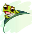 Horned frog cartoon vector image vector image
