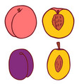 isolated flat peach and plum vector image