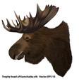 kamchatka moose vector image vector image