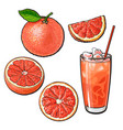 whole half quarter grapefruit and glass of juice vector image vector image