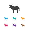 of animal symbol on kine icon vector image