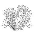 leafs plant decorative icon vector image