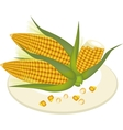 A Plate of Fresh Corn and Kernel Corn vector image vector image