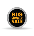 big summer sale icon vector image vector image