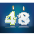 Birthday candle number 48 vector image vector image