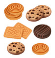 cookies biscuits with chocolate and cream pieces vector image vector image