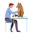 dog breeding and care for animals by doctor vector image vector image