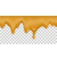 honey drip splash melt syrup texture orange juice vector image