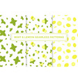 lemon and mint colorful seamless patterns vector image