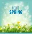 spring background with flowers daisies in grass vector image vector image