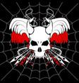 web skull vector image