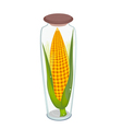 A Ears of Corn in Glass Bottle vector image vector image