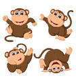 collection of the baby monkey vector image