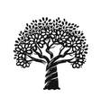 decorative tree silhouette nature symbol vector image vector image