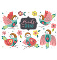 set isolated beautiful spring birds vector image vector image