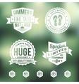 Summer Sale Vintage Badges Set vector image