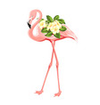 flamingo bird and plumeria flowers isolated over vector image vector image