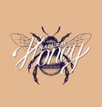 honey lettering vector image vector image