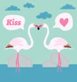 pair of flamingo bird cartoon card vector image