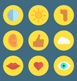 set flat icons vector image
