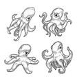 set of isolated cartoon baby or kid octopus or vector image vector image