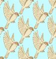 Sketch cute sparrow vector image vector image