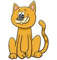 funny cat or kitten cartoon animal character vector image vector image