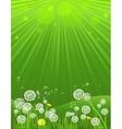 Green summer background vector image