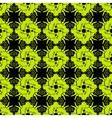 Kaleidoscope Pattern vector image vector image