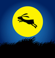 rabbit on moon concept 2 vector image