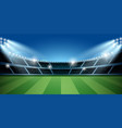soccer or football stadium with spotlight vector image vector image