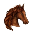 Brown stallion horse head sketch vector image vector image