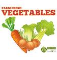 Farm fresh vegetables vector image vector image