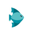 marine life fish cartoon sea fauna animal vector image vector image