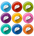 Round icons with leaves vector image vector image
