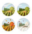 set isolated farm or field garden at seasons vector image