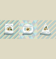 three colored labels with plumeria vector image