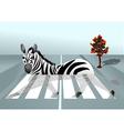 zebra in the city vector image vector image