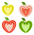 apple decorated vector image vector image