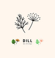 dill icon vegetables logo fennel spice thin vector image