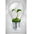 green sprout in the bulb vector image vector image