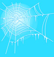 icy cobweb isolated on blue background vector image vector image